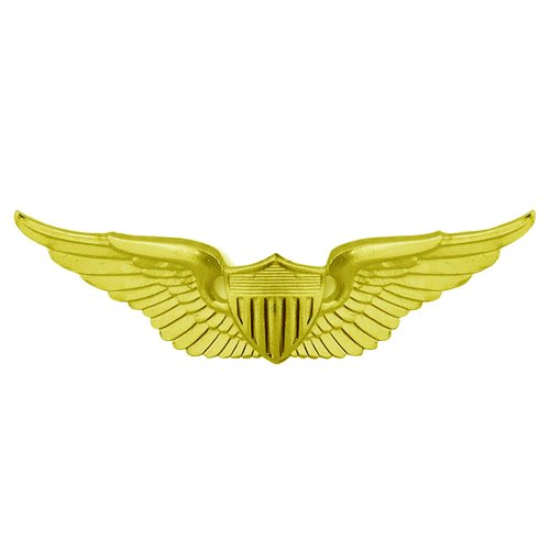 Basic Aviator Army Wing Patch - Gold