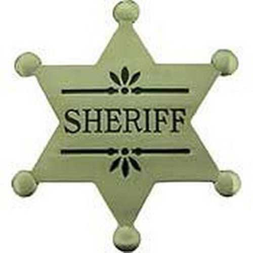 Eagle Emblems 2.1/2 Inch BDG PWT Sheriff Pin