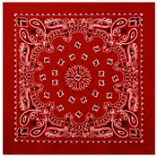 Large Trainmen Bandana 27 Inch